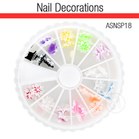 Nail Art Kit 3D Flowers ASNSP18