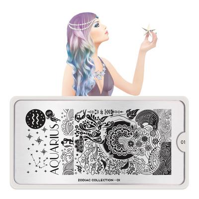 Stamping Nail Art Image Plate MOYOU Zodiac 01