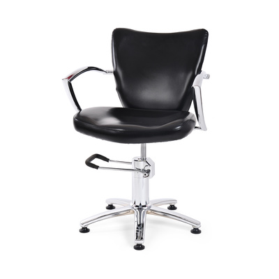 Hair Styling Chair with Hydraulic NS-6002
