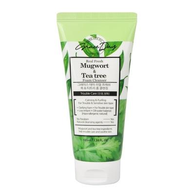 Foam Cleanser for Trouble & Sensitive Skin GRACE DAY Mugwort & Tea Tree 100ml