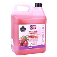 Shampoo Colour Protect for Dyed and Matte Hair RONNEY Cherry 5L
